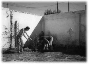 origenes_jardin