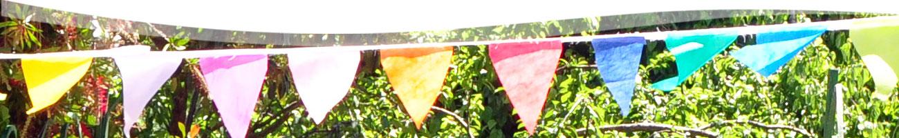 banderines_banner